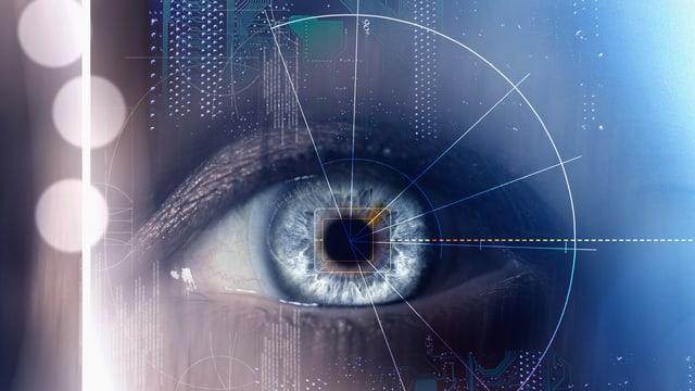 Ein Auge mit Daten, Montage