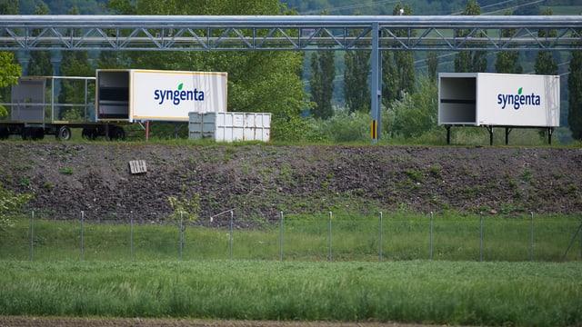 Containers cun logo dal concern svizzer Syngenta.