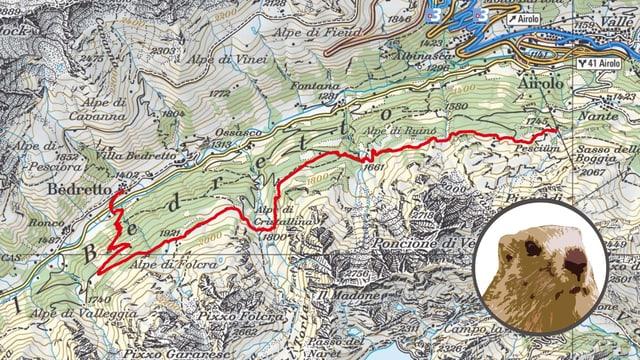 Karte mit Murmelicomic