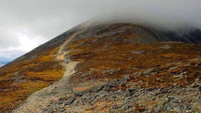 Der Pfad hoch zum Berg Croagh Patrick, der mit hellbraunem Moos bewachsen und dessen Gipfel wolkenverhangen ist.