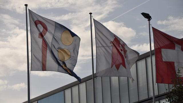 Reinacher Fahne, daneben eine Baselbieter und eine Schweizer Fahne