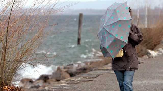 Spaziergängerin auf dem Seeuferweg bei Rorschach.