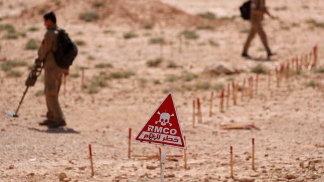 Minenkontrolleure suchen Minen in Syrien, die vom IS versteckt wurden.