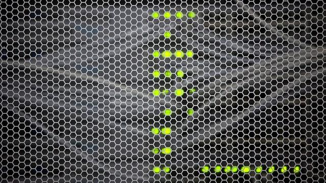 Kabel und LEDs eines Servers hinter Gitter.