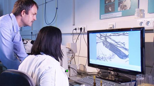 2 Forscher im Labor