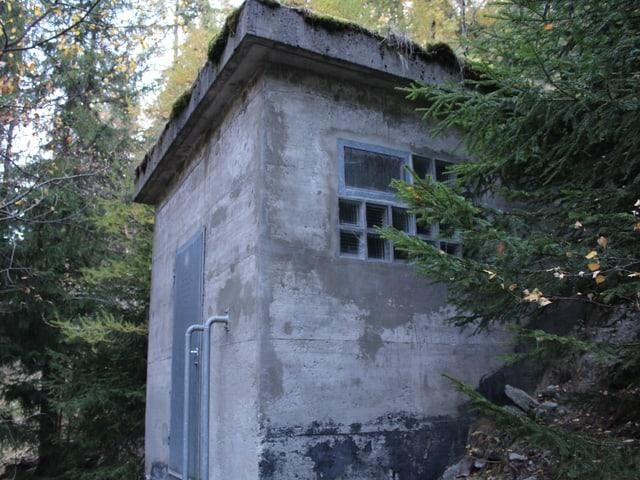 Ein Wasserreservoir im Wald.