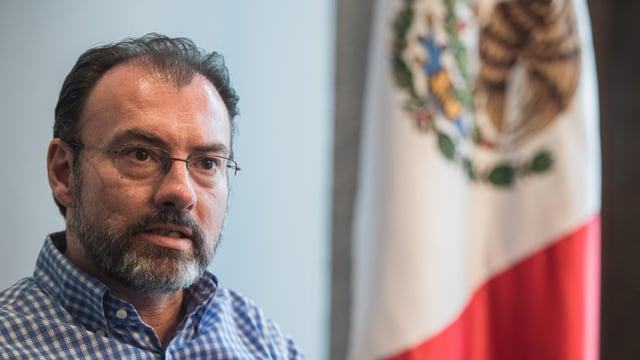 Aussenminister Luis Videgaray neben einer Fahne seines Landes