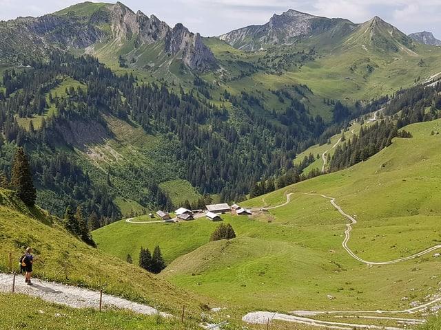 Eine Gruppe von Hütten auf einer Alp.