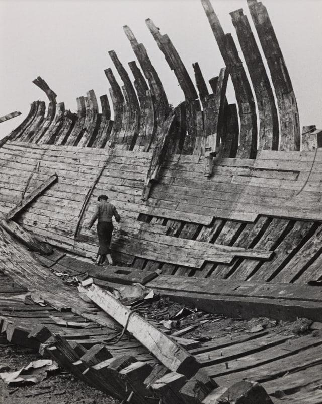 Wrack auf der Ile Bréhat, Bretagne, 1936.