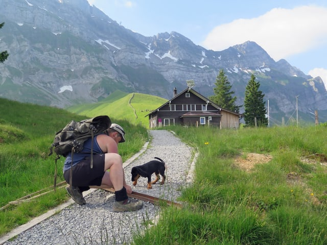 Mann und Hund auf Wanderweg