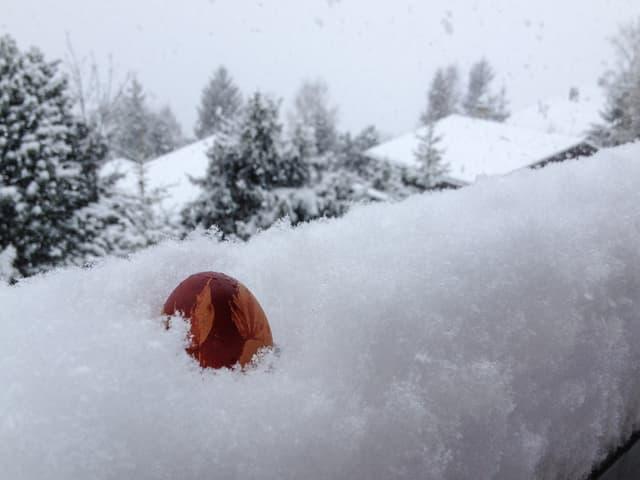 Neuschnee mit rotem Osterei, das darin versinkt. Im Hintergrund verschneite Tannen und Häuser.