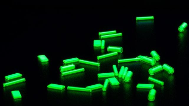 Röhrchen in der Grösse eines Streichholzkopfes liegen verstreut auf einem Tisch. Sie leuchten grün.