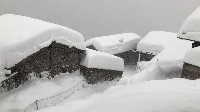 Tief verschneite Häuser