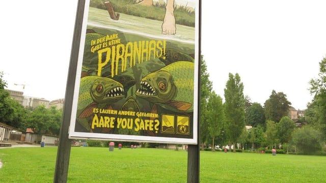 Ein Plakat mit Piranhas.