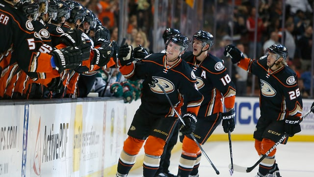 Die Ducks feiern das 1:0 gegen Minnesota Wild.