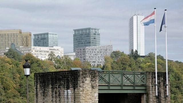 Eine Brücke vor Bäumen, im Hintergrund Hochhäuser des Finanzzentrums