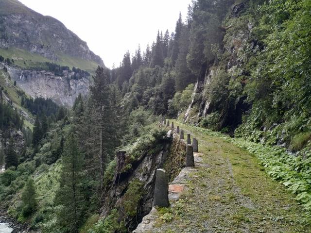 Eine alte, grasüberwachsene Strasse in den Bergen.