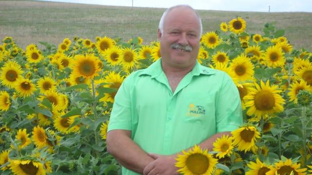 Ein Mann steht in Sonnenblumen.