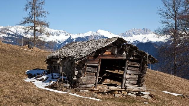 Kleines Holzgebäude, das schief auf einer Wiese steht.