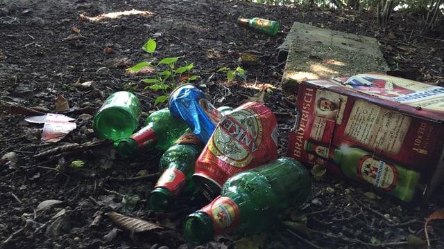 In den Wald geworfene Bierflaschen und Aludosen