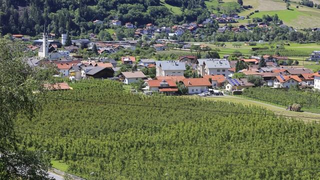Survista da tut la plantascha da Gerhard Maass a Prutz