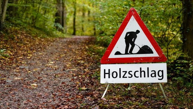 Ein Hinweisschild warnt Passanten vor Holzschlag
