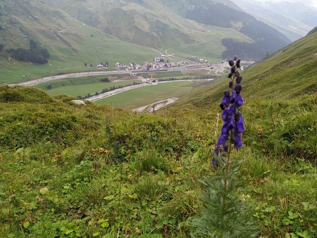 Blick auf das Dorf Hinterrhein