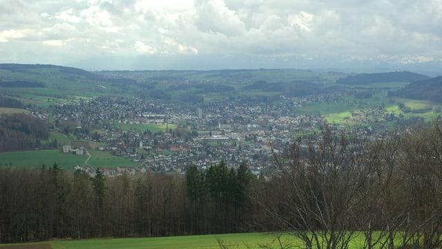 Bild vom Homberg auf die Gemeinde Reinach im Kanton Aargau: Im Vordergrund sieht man Sträucher und einen Wald, dahinter liegt Reinach.