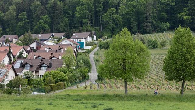 Eine Einfamilienhaussiedlung.