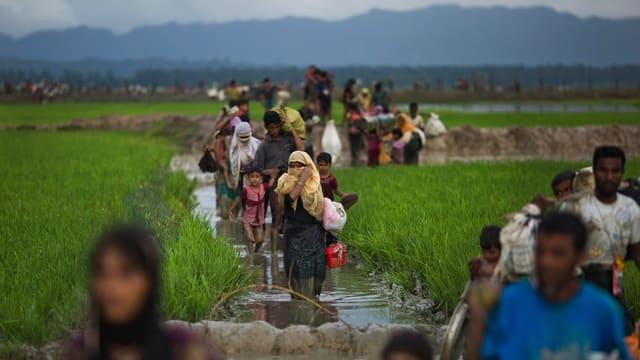 Rohingya auf der Flucht nach Bangladesch.