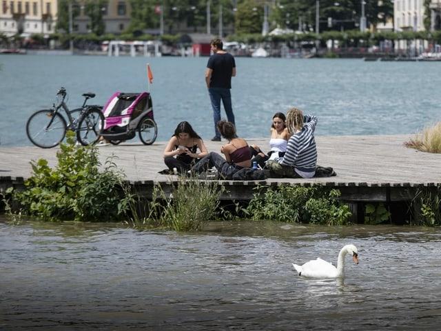 Jugendliche sitzen am Ufer eines Sees, im Vordergrund schwimmt ein Schwan vorüber
