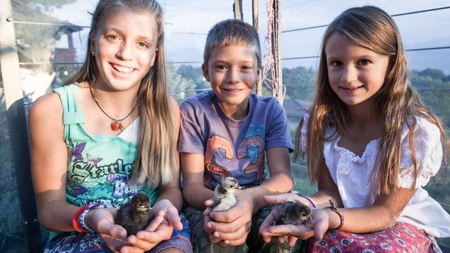 Die drei Kinder halten je eine Küken der Rasse Appenzeller Spitzhauben in der Hand.