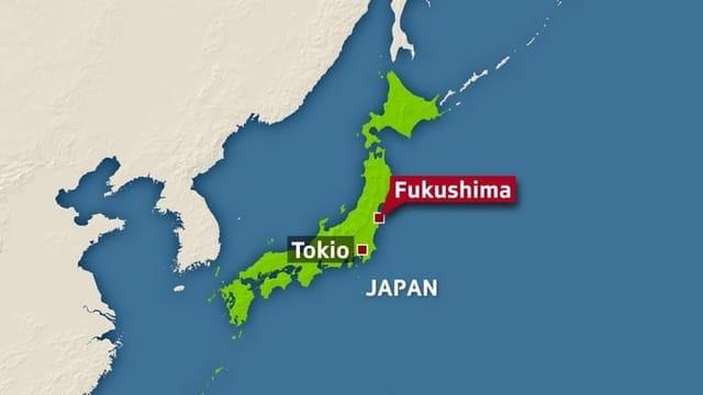 Die Tsunami-Katastrophe