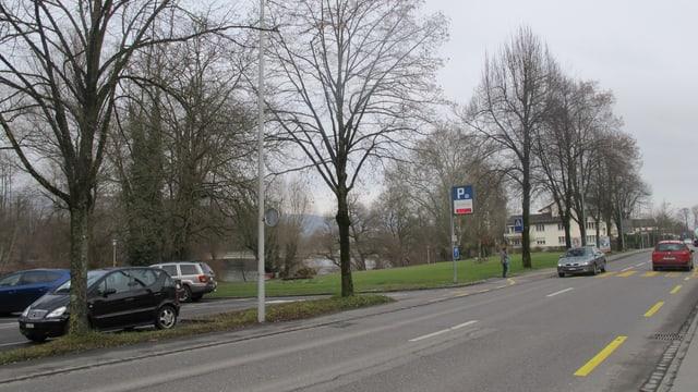 Blick über die Strasse auf eine Wiese, im Hintergrund die Aare, im Vordergrund ein Parkplatz
