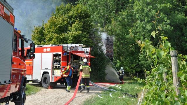 Zwei Feuerwehrautos und vier Feuerwehr-Einsatzkräfte bei der Arbeit.