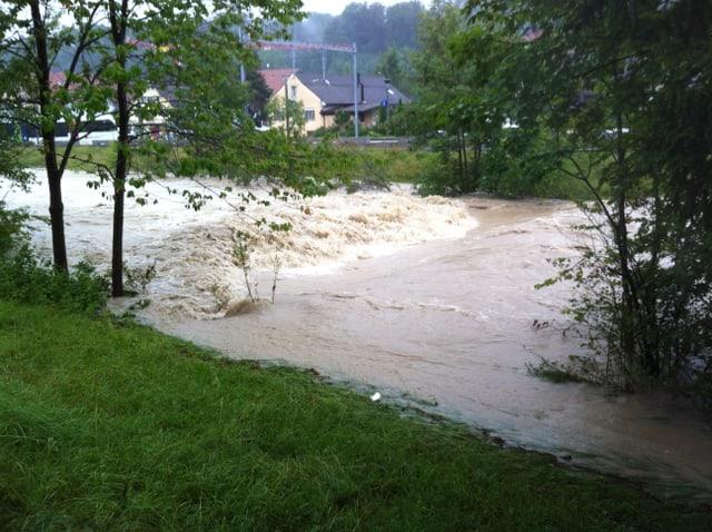 Die Töss führt Hochwasser und ist stellenweise über die Ufer getreten
