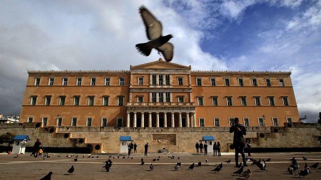 Vögel vor dem Parlamentsgebäude in Athen.