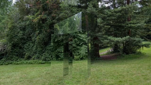 Kuben spiegeln die umgebene Landschaft wider.