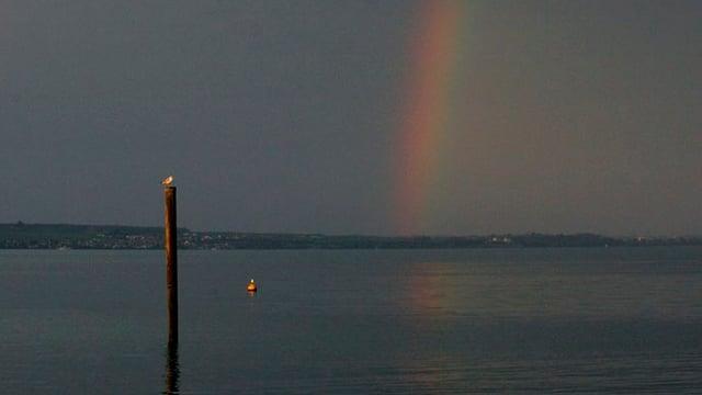 Regenbogen über dem Bodensee