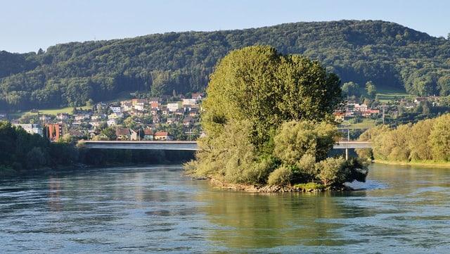 Eine kleine Insel mit Bäumen bewachsen im Rhein.