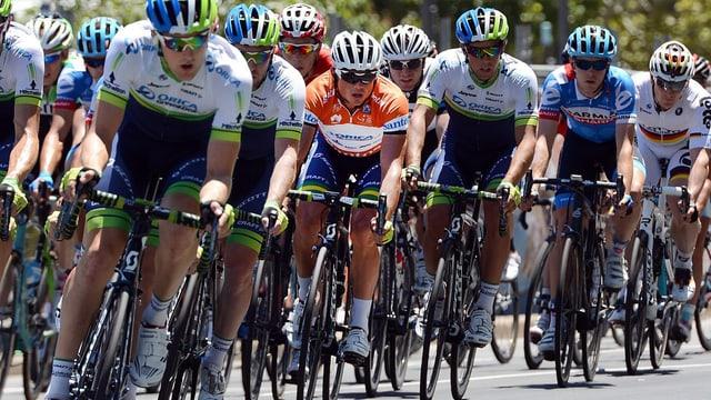 Simon Gerrans während der Tour Down Under.