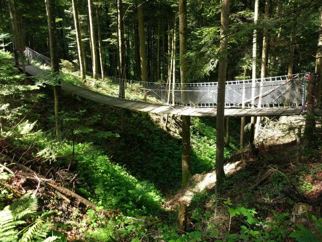 Kleine Hängebrücke im Wald
