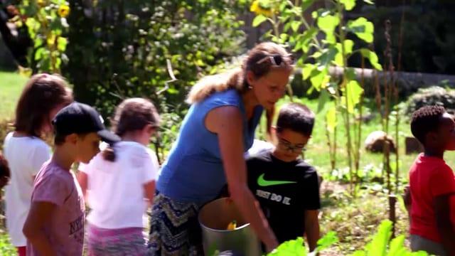 Video «Biodiversität im Schülergarten» abspielen