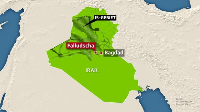 Karte, auf der die vom IS besetzten Gebiet im Irak und die Stadt Falludscha eingezeichnet ist.