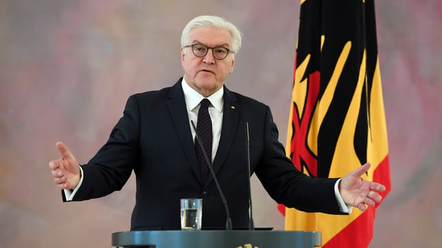 Il president tudestg Frank-Walter Steinmeier