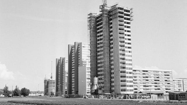 Altes Foto der Siedlung, Hochhäuser im Baum