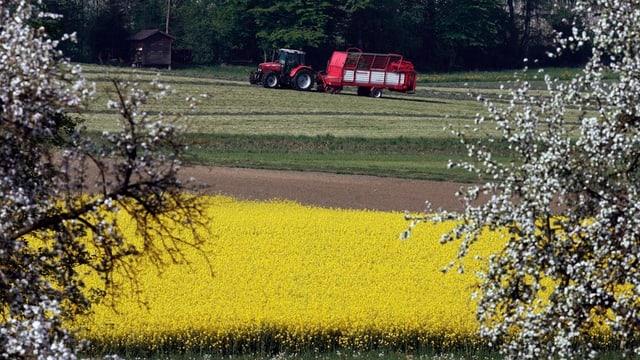 Landwirtschaft Thurgau