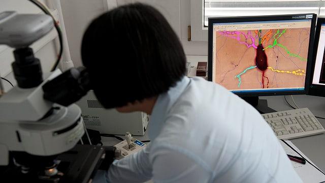 Frau am Mikroskop, dahinter auf einem Bildschirm eine Neurone.
