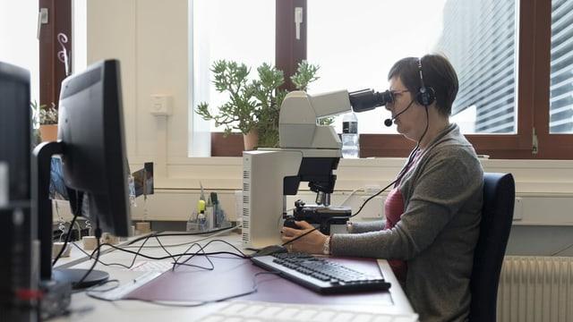 Eine Frau schaut in ein Mikroskop