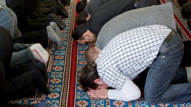 Betende Moslems, die auf einem grossen Gebetsteppich in Reih und Glied beten.
